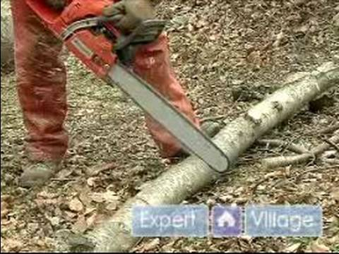 How to Cut Firewood from a Fallen Tree : How to Cut Large Logs from a Fallen Tree