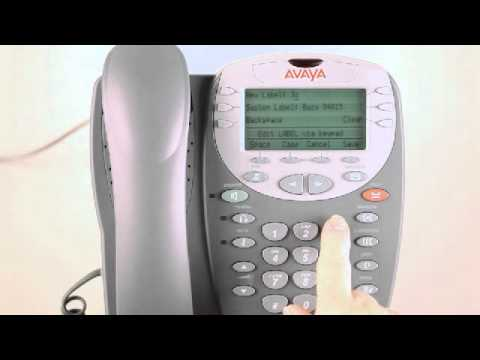 Telephone & Voicemail Services:  How to label a button on an Avaya 2400 series phone set