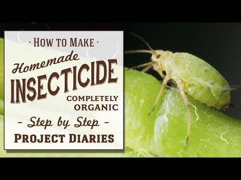 ★ How to: Make Homemade Insecticide (A Complete Step by Step Guide)