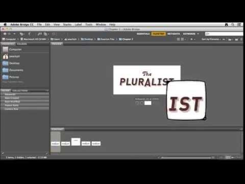 Adobe Illustrator CC Tutorial Using Adobe Bridge