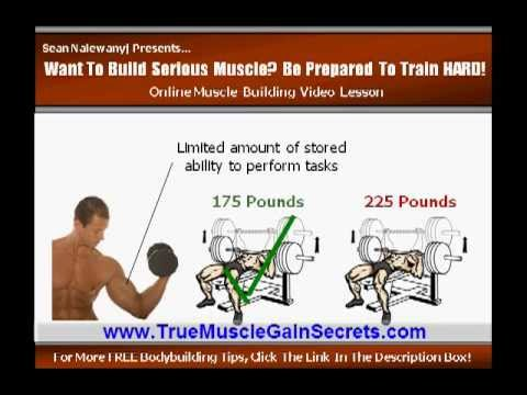 What Is The Fastest Way To Gain Muscle Mass