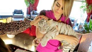 Lana's New Pet Tiger !!!