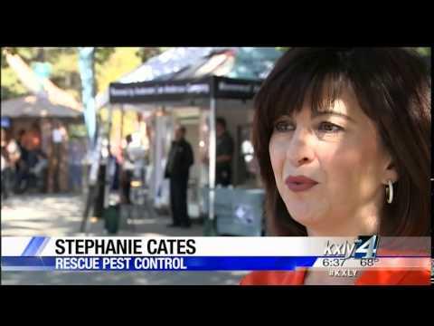 Spokane Valley company developing new product to keep yellowjackets at bay