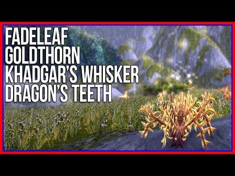 WoW HERB FARMING: Fadeleaf, Khadgar's Whisker, Goldthorn, and Dragon's Teeth