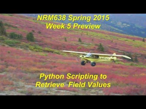 1) Retrieving Field Values using Data Access Search Cursor