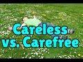 Careless or carefree?