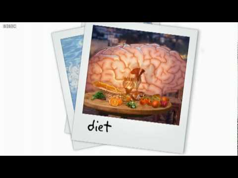 Look After Your Brain - Brainsmart - BBC