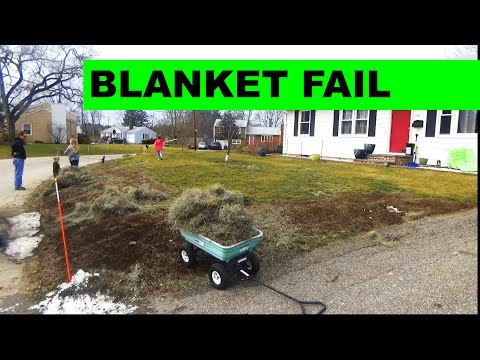 Seed Germination Blanket FAIL - Tearing up the germination blanket