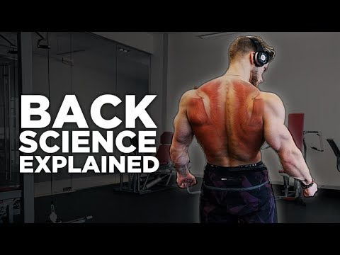 The Most Scientific Way to Train Your BACK In 2018  | Training Science Explained