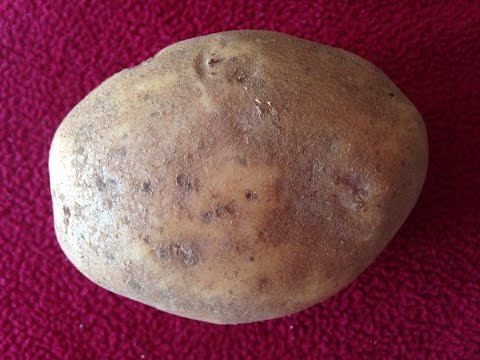 How to clean a rusty cast iron pan with a POTATO!!