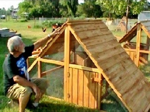 4 x 8 Coop for 10-12 chickens/ducks
