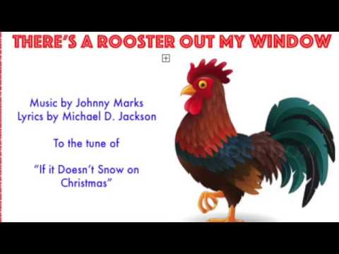 There's a Rooster Out My Window