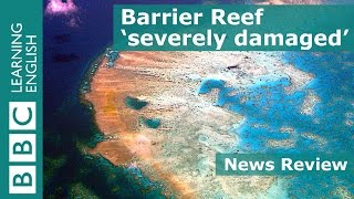 BBC News Review: Great Barrier Reef