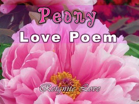 PEONY ROMANTIC LOVE POEM With Beautiful Erhu Music: Reignite Love TV