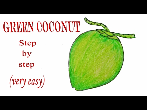 How To Draw A Green Coconut Step By Very Easy Download Mp4 Full HD13AZX