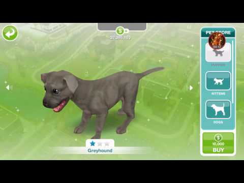 Sims Freeplay pet cheat!!!