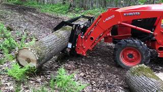 Ultimate Bush Grabber! Kubota L3301 with Wicked Grapple and
