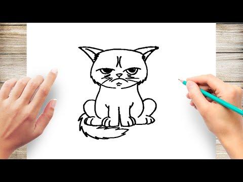 How to Draw Grumpy Cat Step by Step