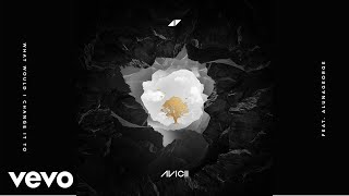 Avicii - What Would I Change It To ft. AlunaGeorge