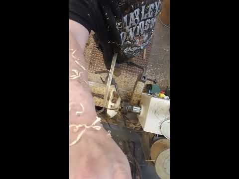 Ant Chewed Hard Maple Burl Video  5