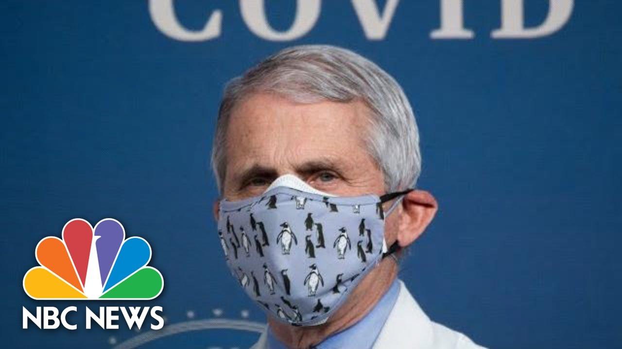 Dr. Fauci Testifies At Senate Hearing On Covid-19 Response | NBC News