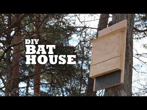 DIY Bat House