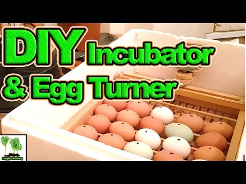 30 Chicken Eggs, 1 Homemade Incubator With Automatic Egg Turner (2018)