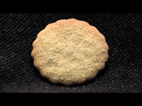 Pinon Biscochito Celinas Biscochito's