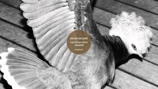 Jacob Bellens: Polyester Skin (Man Power Remix)