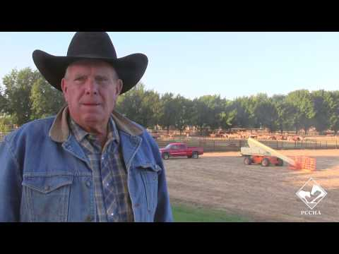 Cattle Business with Pat Russell