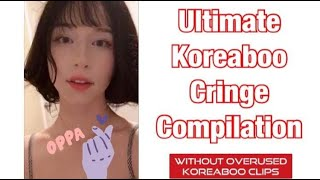 Ultimate Koreaboo Cringe Compilation [WITHOUT OVERUSED CLIPS]