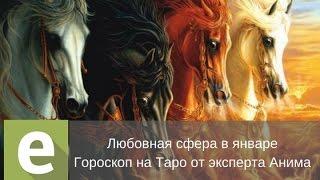 Январь. Любовный таро-гороскоп для всех стихий от эксперта Liveexpert.ru Анима