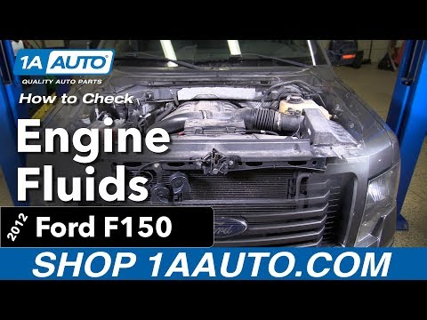 How to Check you Engine Fluids 12 Ford F150