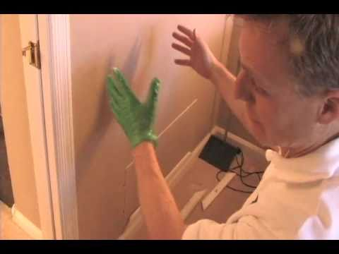 Scorpion Quick Facts: How Do Scorpions Get in the House - Bathroom