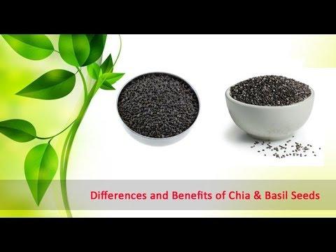 CHIA VS BASIL   ARE CHIA SEEDS AND BASIL SEEDS SAME ?
