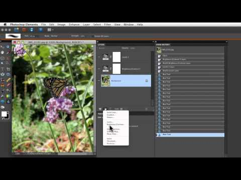 Photoshop Elements Tutorials- Undo History