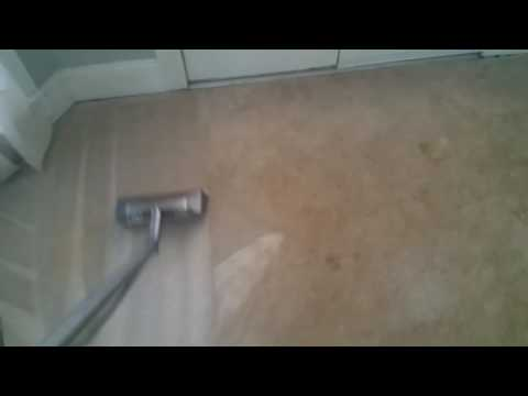 Cleaning Polyester carpets with PMF mach 12