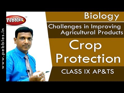 Crop Protection : Improving Agricultural Products | Biology | Class 9 | AP&TS