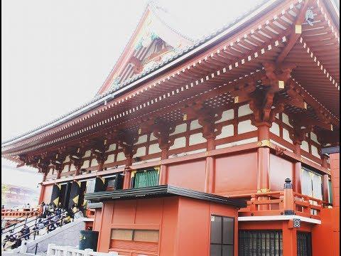 Tokyo City Tour | Sensoji | Shibuya | Shinjuku | Akihabara | Ginza | Disneyland | Venus Fort