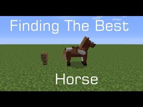 The Best Minecraft Horse! (Snapshot 13w16a)