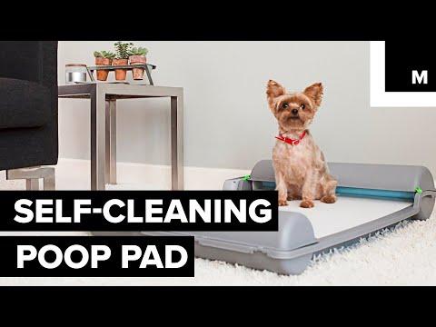Self-cleaning poop pad