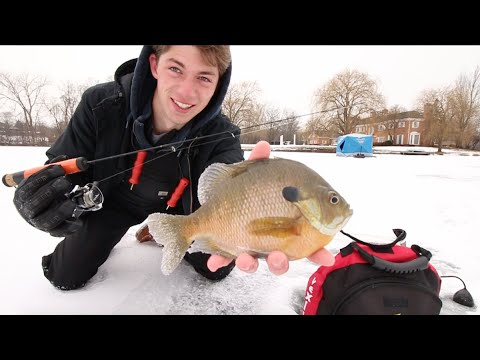 Jigging for Gills & Crappie -- A Day On The Ice.