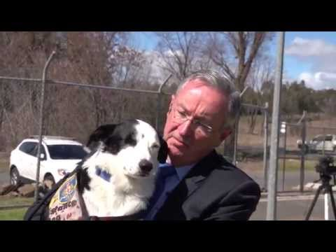 Justice NSW: Dogs for Diggers