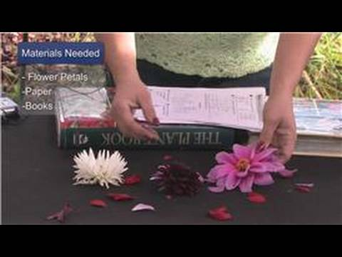 Gardening Tips : How to Dry Flower Petals