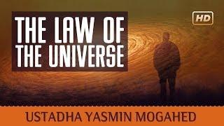 The Law Of The Universe ᴴᴰ ┇ Amazing Islamic Reminder ┇ by Ustadha Yasmin Mogahed ┇ TDR Production ┇
