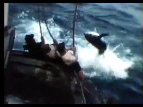 San Diego Tuna Jack Pole Fishing - Mermaid Boat - Tuna Fleet History