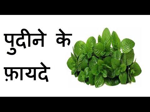 Health Benefits of Mint (Pudina) in Hindi | पुदीना के फ़ायदे, पुदीने के स्वास्थय लाभ