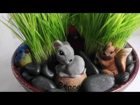 DIY/Indoor Cat Garden