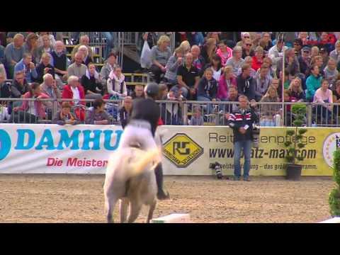 Xxx Mp4 Katrin Eckermann Quin 6yo Springpferden 2016 3gp Sex