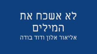 אליאור אלון ודוד בודה - לא אשכח את המילים